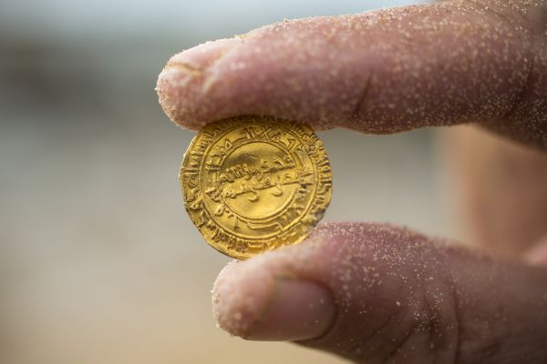 One of the newly discovered gold coins.