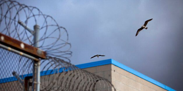 A bird flies over barbed wire on top of fences at the Richard J. Donovan Correctional Facility in San Diego, California, U.S.