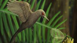 「最小の恐竜」を発見。想像図はどう見ても鳥、なぜ?