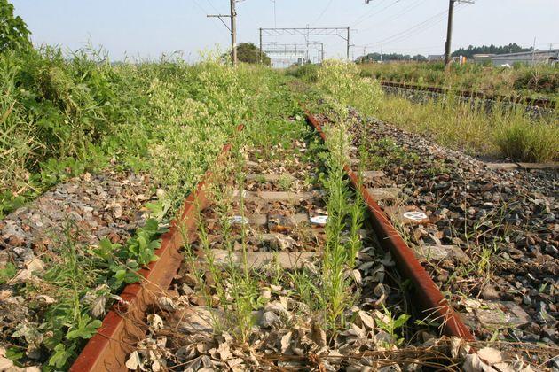 東日本大震災と福島第1原発事故の影響で、常磐線が不通になっている。JR磐城太田駅(奥)付近では、電車が走らなくなった線路が赤くさび、雑草が生い茂る。一般の立ち入りが禁止されている原発から20キロ圏の「警戒区域」に近い(福島県南相馬市)