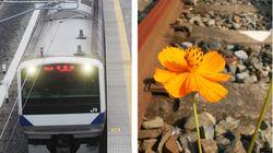JR常磐線が全線開通。東日本大震災で途切れた線路が再び繋がる...。「写真」で振り返る復興の歩み