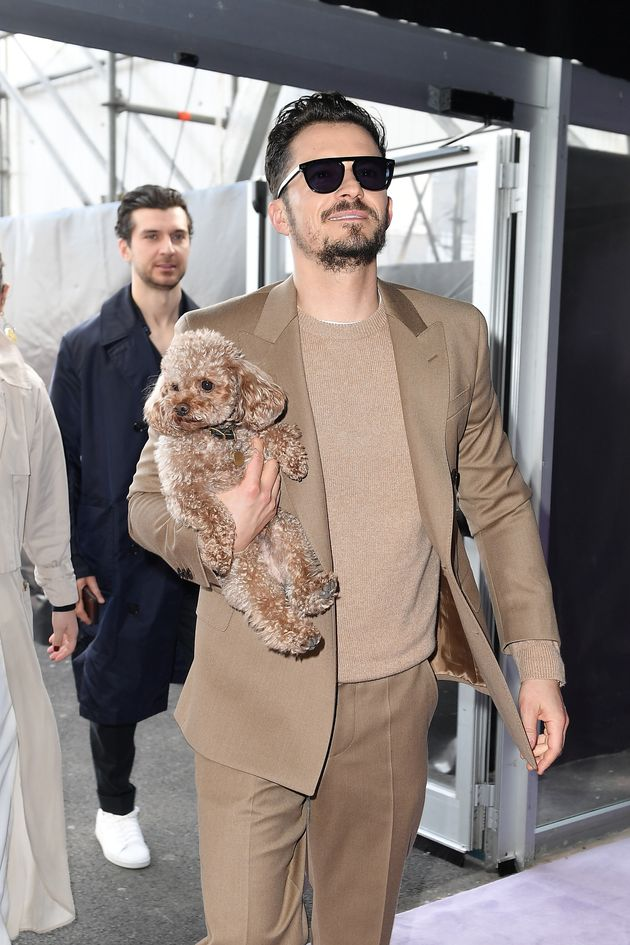 Orlando Bloom and his dog Mighty attend the Boss fashion show on February 23 in Milan,