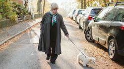 Lo que tienes que saber al sacar de paseo al perro durante el estado de