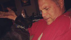 Housebound Pet Owners Share Hilarious Cat Photos During Coronavirus