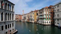 Así está el agua de los canales de Venecia por el coronavirus: transparente y con
