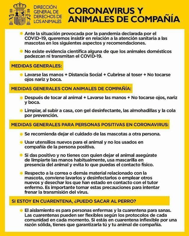 Indicaciones generales desde la Dirección General de Derechos de los Animales.