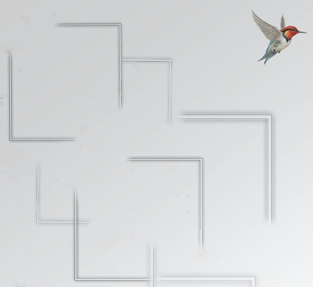 Little bird escape out of a maze, freedom concept stock
