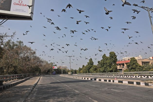 Pigeons fly over a deserted street following a call for lockdown amid growing concerns of coronavirus,...