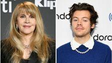 Stevie Nicks' Soziale Isolation Empfehlung: Hören Sie Zu Harry Styles