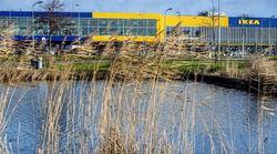 IKEA presenta un ERTE para el 83% de su plantilla en