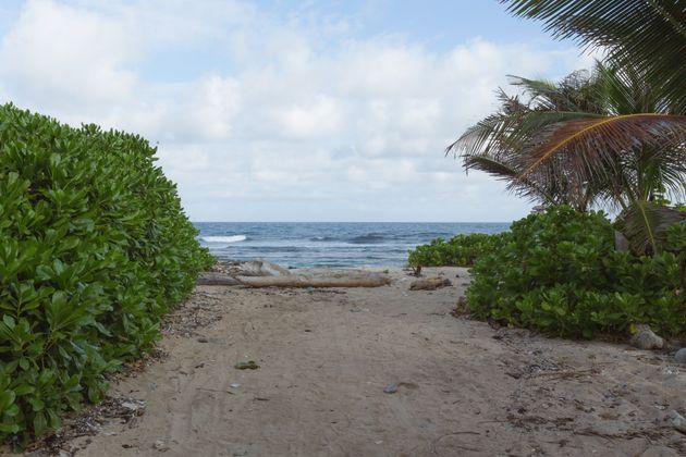 Utila is a small island off the coast of Honduras in the Caribbean