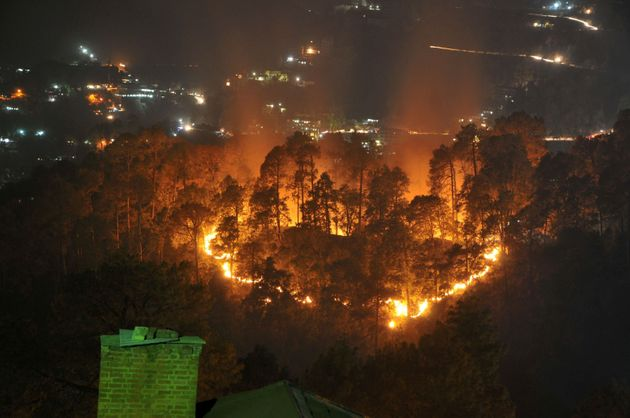 Wildfires burn through jungle near the northern hill town of Shimla in the Indian state of Himachal Pradesh...