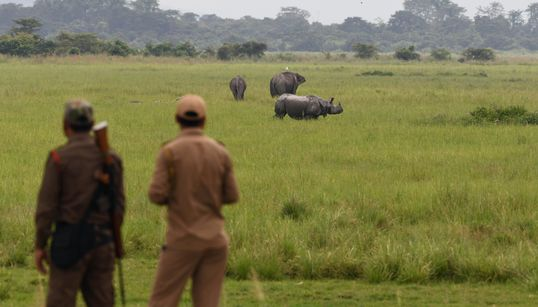 Here's How India's Forest Officials Are Guarding Wildlife During
