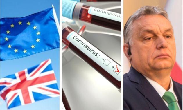Che cosa hanno in comune Brexit, Covid-19 e