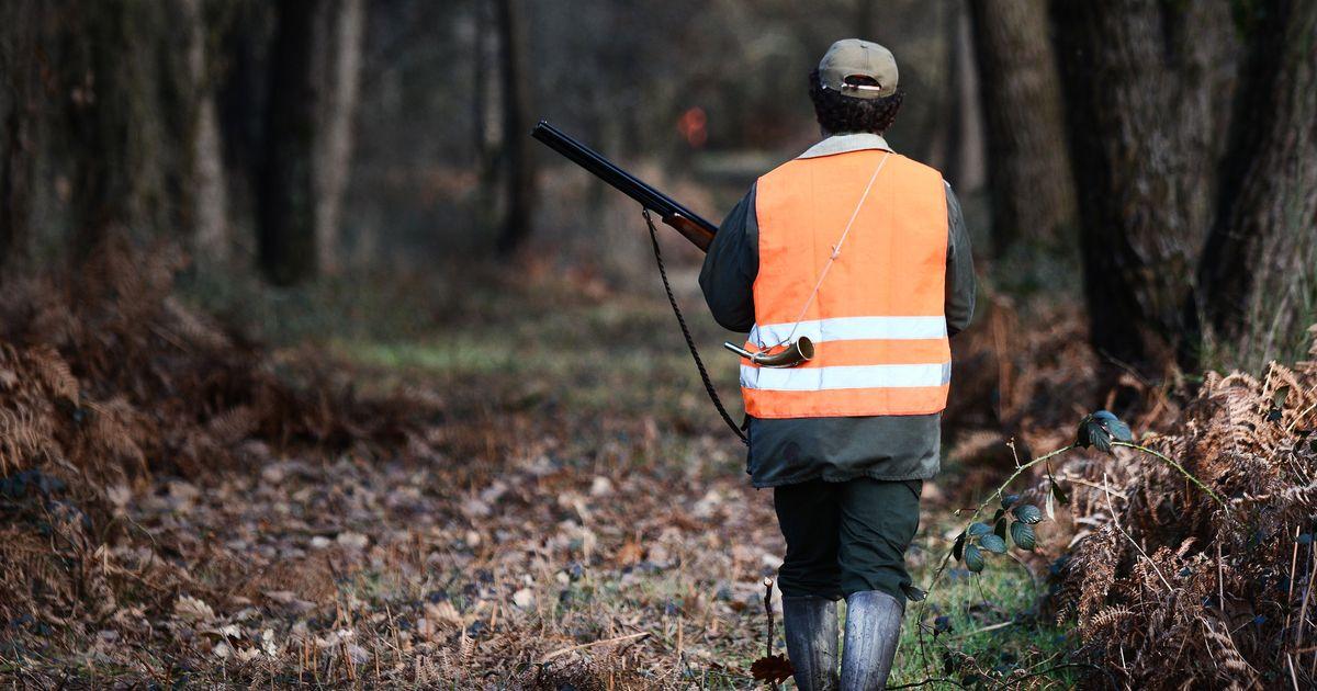 Malgré le confinement, certains chasseurs sont autorisés à reprendre le fusil
