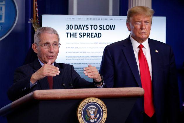 앤서니 파우치국립알레르기·전염병 연구소(NIAID) 소장이 백악관 코로나19 정례 브리핑에서 발언하고 있다. 2020년