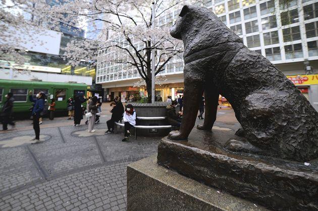 渋谷の様子(イメージ画像)