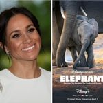 Meghan Markle's New Disney Flick 'Elephant' Is A Perfect Fit For The Whole