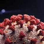 C'è nuova strada con cui il coronavirus invade
