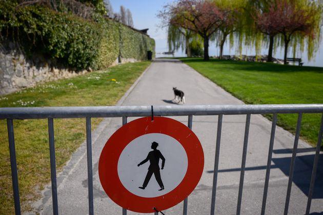 4월4일 '락다운' 상태의 스위스 제네바 시내의 한 공원에서 폐쇄된 정문 뒤로 고양이 한 마리가 혼자 걷고