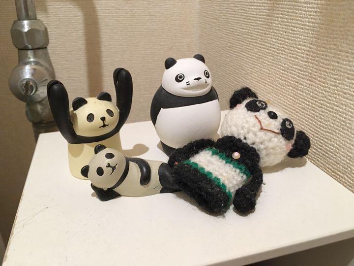 パンダたちに癒される。パンダ大好き♡