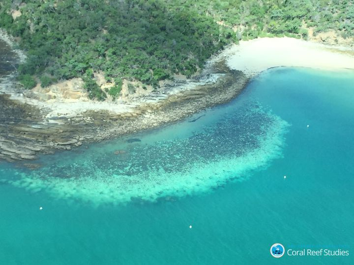 """For the first time, severe bleaching has struck all three regions of the Great Barrier Reef,"" Hughes wrote on Tuesday."