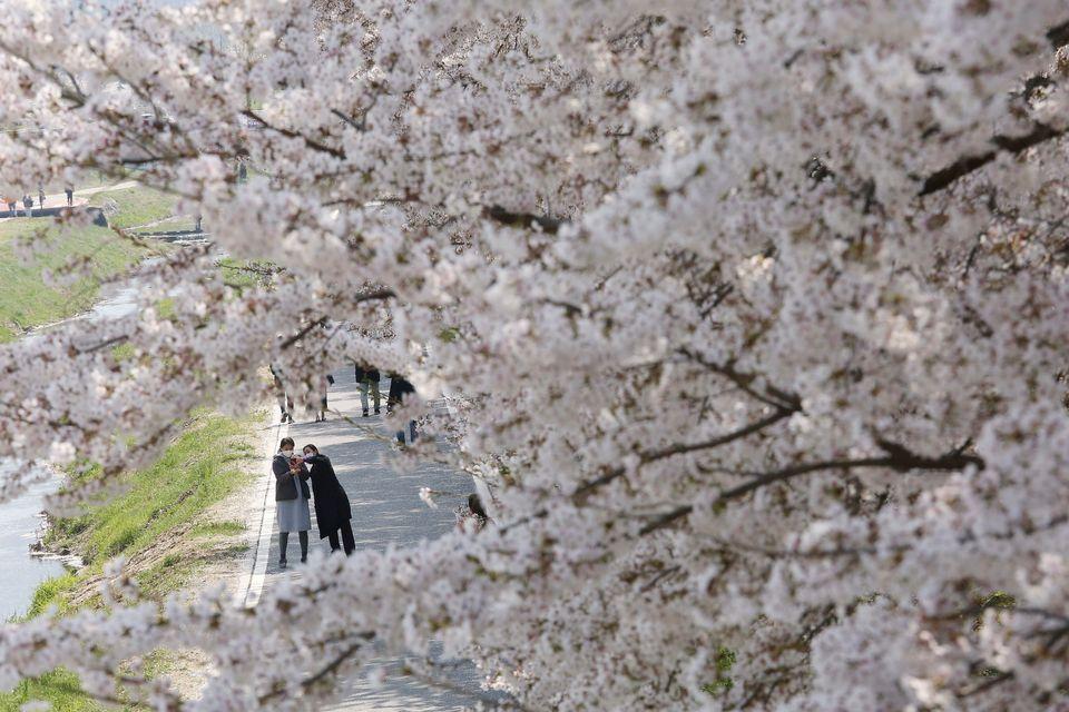 Σεούλ, 6 Απριλίου 2020 (AP Photo/Ahn