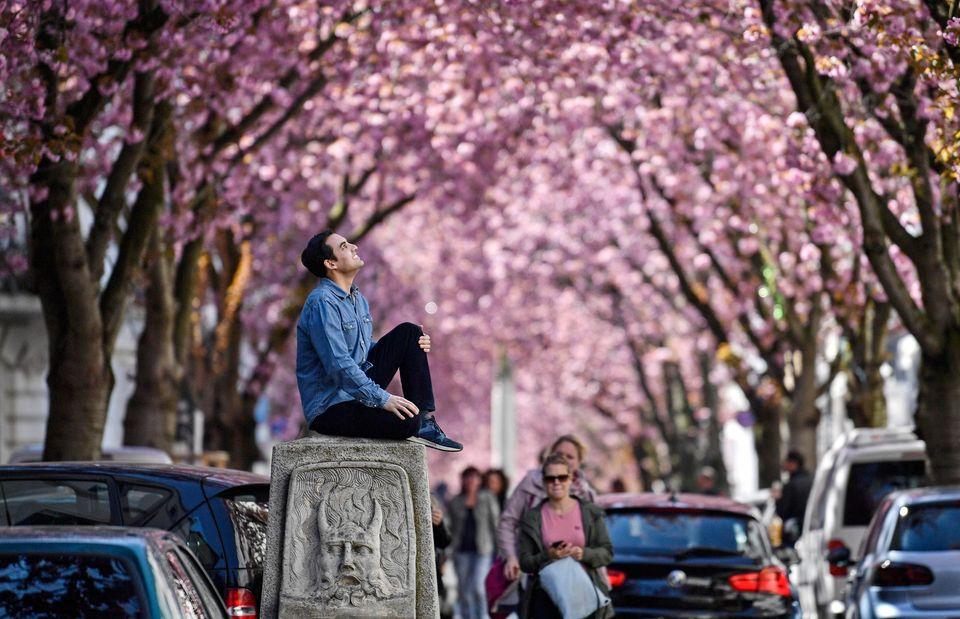 Βόννη, Γερμανία, 5 Απριλίου...