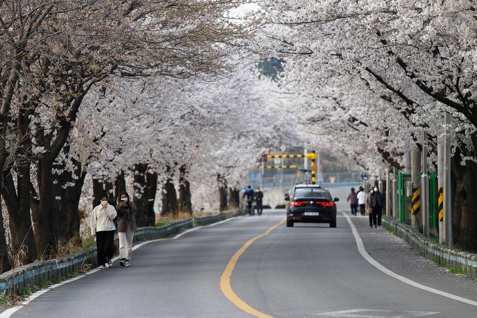 Νότια Κορέα (Seung-il Ryu/NurPhoto via Getty