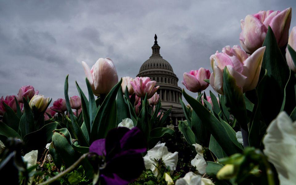 Ουάσινγκτον, 24 Μαρτίου...