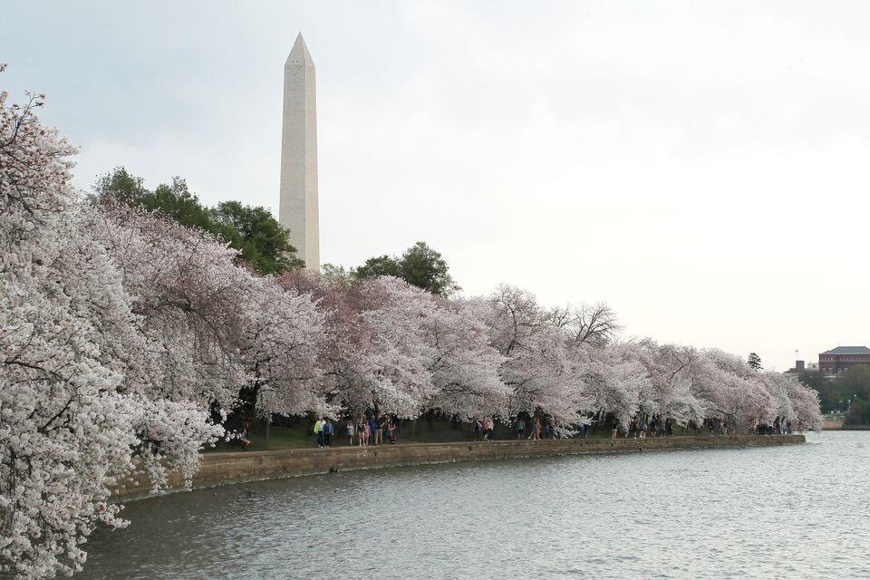 Ουάσιγκτον 20 Μαρτίου...