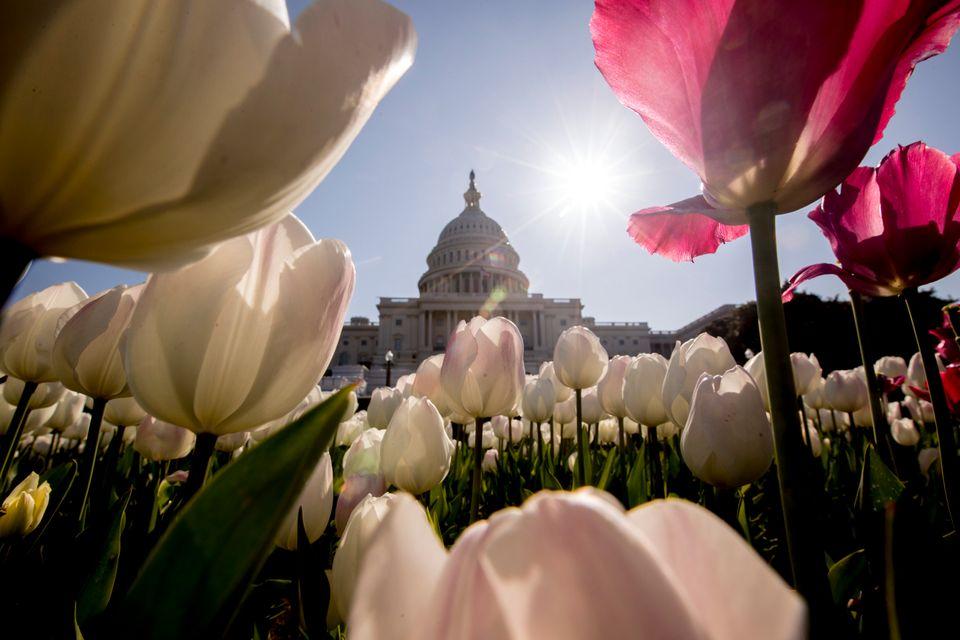 Ουάσιγκτον 6 Απριλίου...