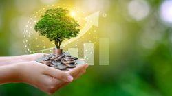 Un piano Marshall green perché l'ambiente non finisca nel