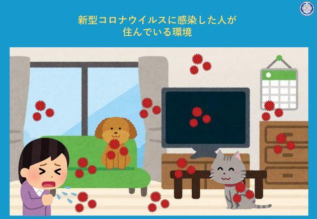 新型コロナウイルスに感染した人が飼っているペットを預かるために知っておきたいこと