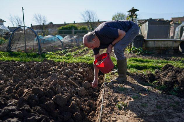 Pour aller récolter ses fruits et légumes dans son potager, il suffit de cocher la case...