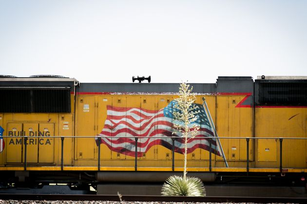 Agave plant in front of a yellow/gold freight train