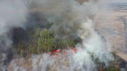 Los incendios arrasan la zona de exclusión de Chernóbil y aumenta la