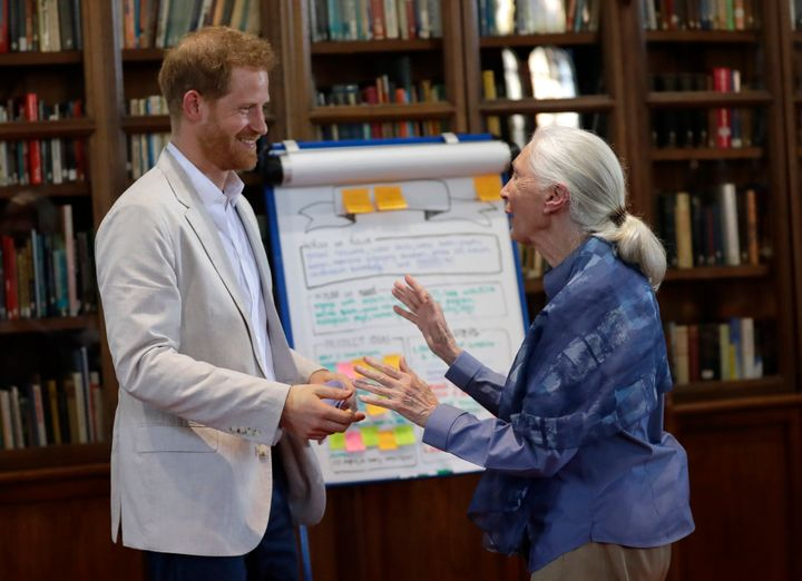 The Duke of Sussex and Dr. Jane Goodall hug as he attends Dr. Jane Goodall's Roots & Shoots Global Leadership Meeting at