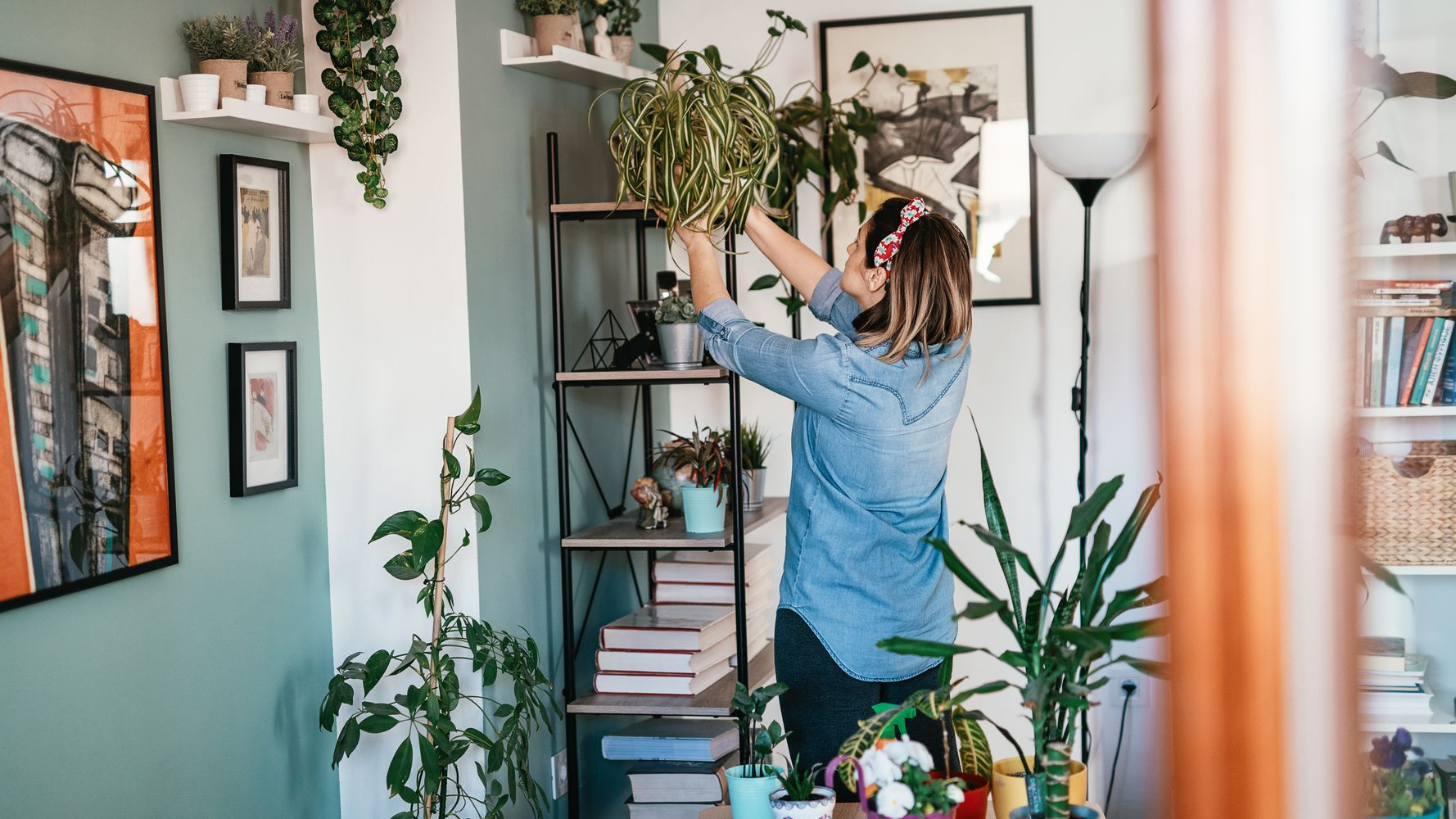7 Underrated Places To Houseplants