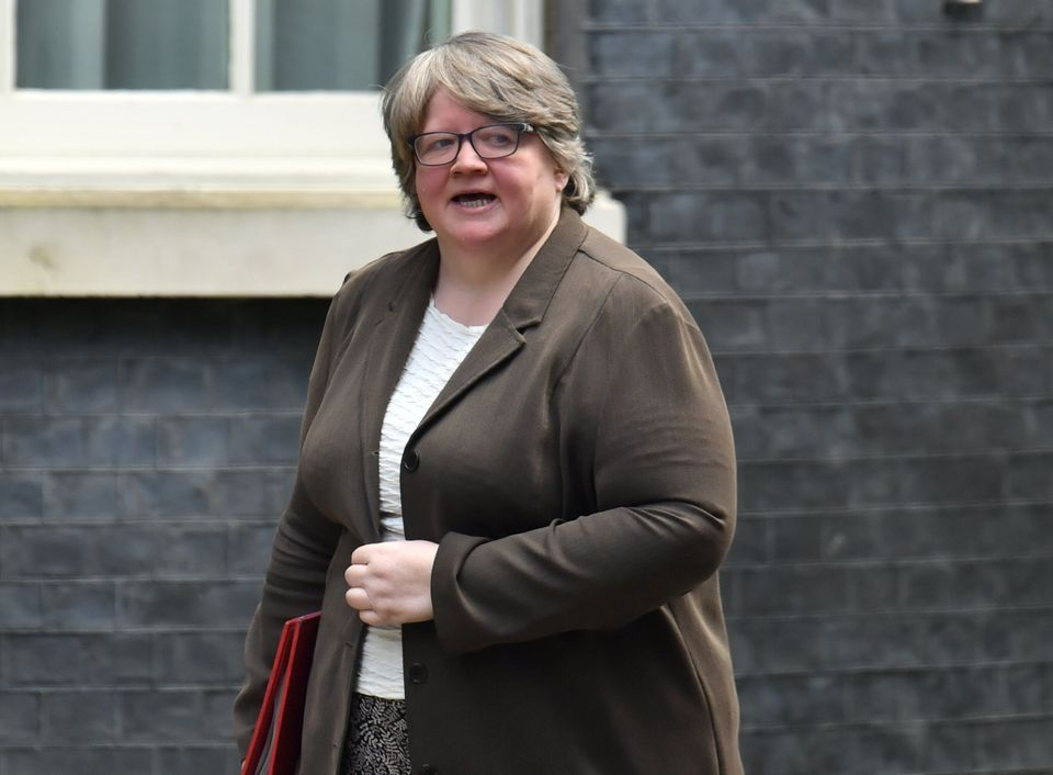 Work and pensions secretary Therese