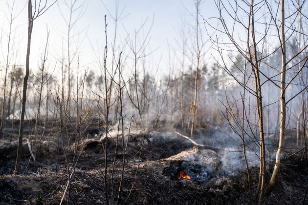 H δασική πυρκαγιά κοντά στον πυρηνικό σταθμό του Τσέρνομπιλ έχει σβήσει, λένε οι ουκρανικές