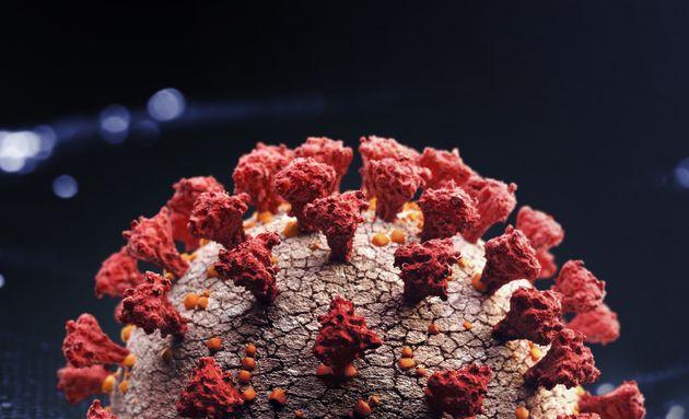 Corona virus close