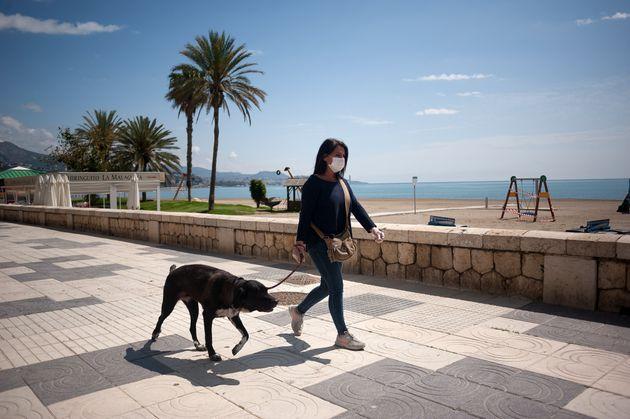 Una mujer pasea con su perro por la playa de la Malagueta