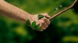 Uscire dalla pandemia con un nuovo Green