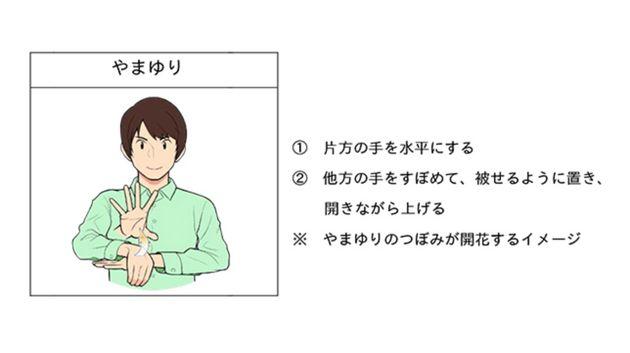 「やまゆり」の手話表現