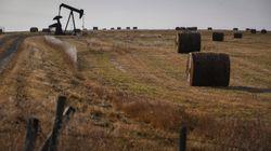 Le pétrole brut américain en territoire négatif pour la première fois de