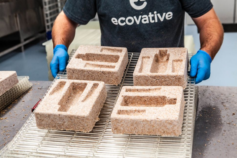Ecovative packaging is a compostable mushroom-based alternative to Styrofoam.