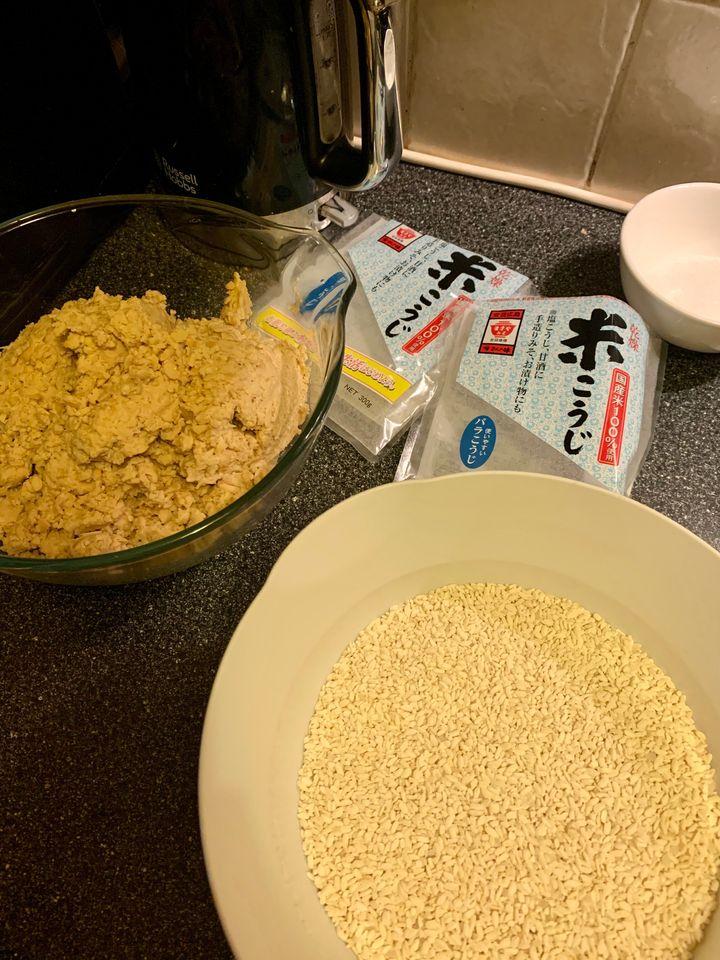 Homemade miso