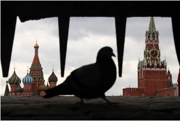 Ένα περιστέρι στέκεται μπροστά στην Ιβηρική Πύλη, στην Κόκκινη Πλατεία, στην Μόσχα, στις 2 Απριλίου, 2020.
