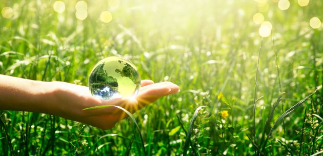 Earth Day 2020 in quarantena: tutorial per il riciclo per aiutare il pianeta anche da